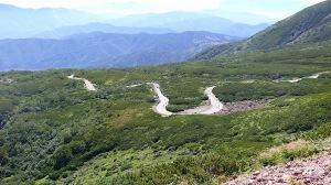 森林限界を超えて延々と続く道